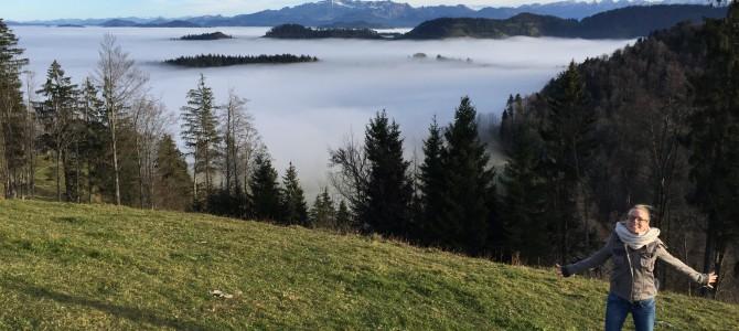 November im Züri-Oberland